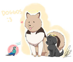 Senpai and Kouhai Doggos ~ JaidenAnimation fanart by alphusprime