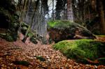 Kameny by tomsumartin