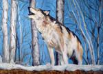 Wolf by JLRincon