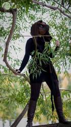 The Tree Top by MoonlightWerewolves