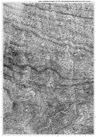 Screentone wood by bakenekogirl