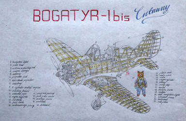 pilot cat and his aircraft by bogatyrkhan