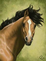 Speedpainting - arab stallion by NutLu