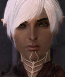 Dragon Age 2: More Puppy Eyes by America007