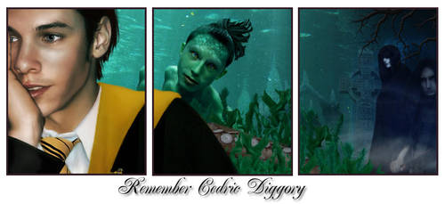 Remember Cedric Diggory by wycked