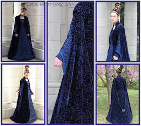 Senator Amidala Costume by Naboo-Girl