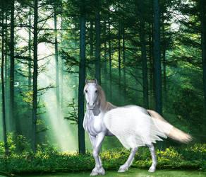 Pegasus im Wald by Suleika2