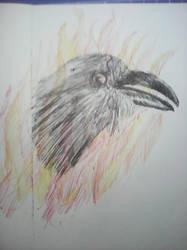 Roasted Raven by JnJrz