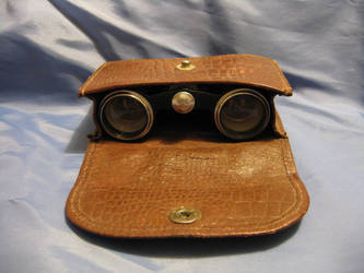 Binoculars and Leatherbox 3 by BlackWolver-STOCK