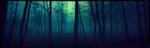 |DECOR| Dark Forest by Volatile--Designs