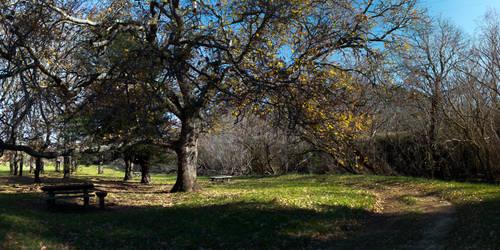 Park near the mill by zevensoft