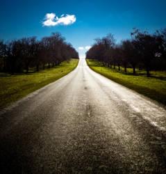 Avenue of Honour by zevensoft