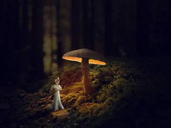 Mushrooms 13 By Dracoart Stock by yijing64