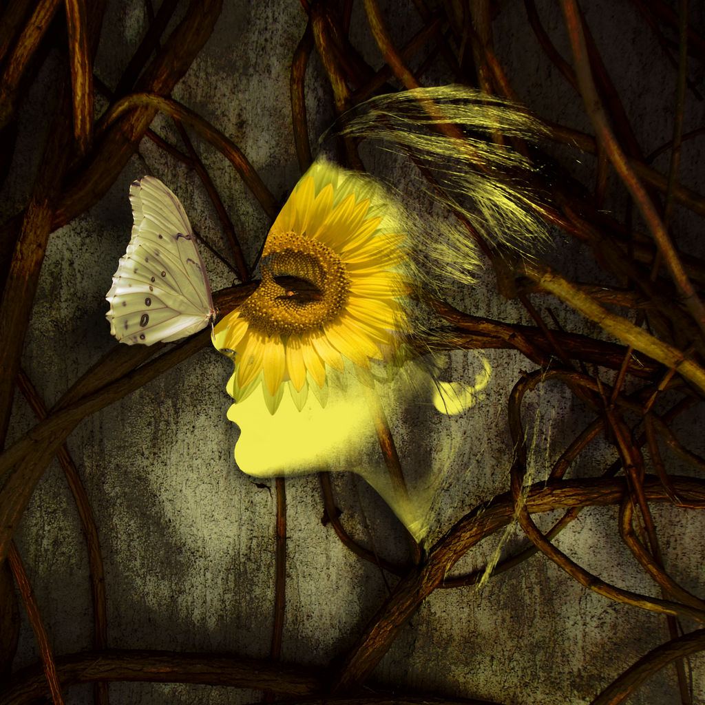 Lost Sunflower by L-inda