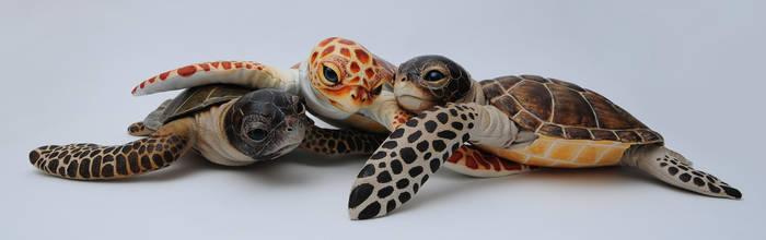 Poseable art doll, baby sea turtle by FellKunst