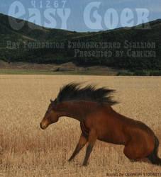 SpiffyCustom5 by HorseFoal