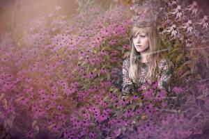 Web of Dreams by EmilySoto