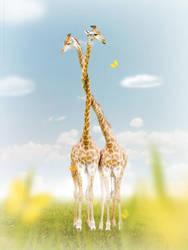 Giraffes by red-FeNIks