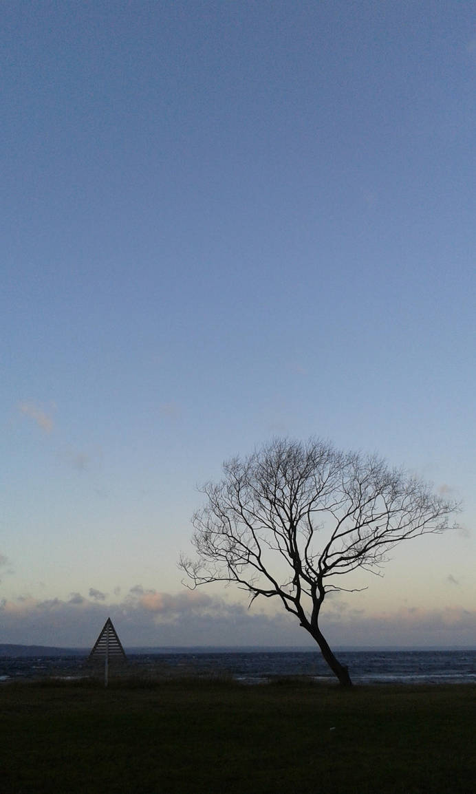 a Tree... by lennarrrt