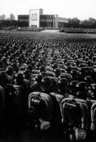 Waffen-SS by tratat