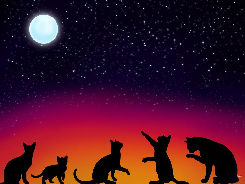 Kitties With Stars by Blabbercat