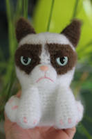Tardar Sauce the Grumpy Cat Amigurumi Doll by Npantz22