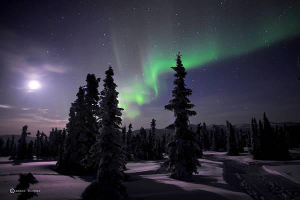 Alaska by loopeehoopee