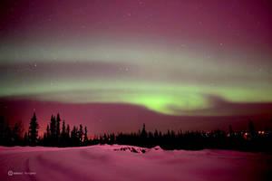 Aurora Borealis by loopeehoopee