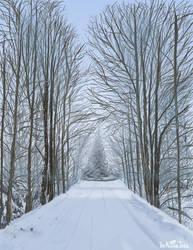 Winter Road by NuclearJackal