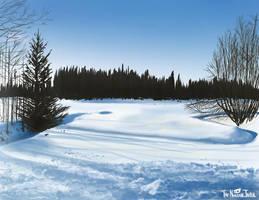 Snowy Morning by NuclearJackal