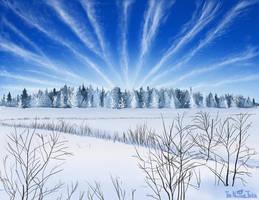 Winter frost landscape by NuclearJackal
