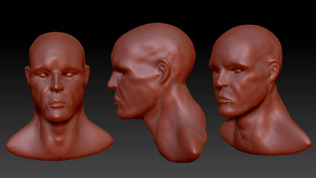 Wip Zbrush Bust by Figgs45