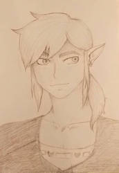 Link: BOTW sketch by Artekerca