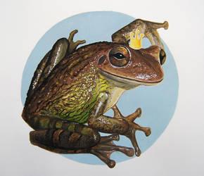 Frog Prince by CrucioCurse