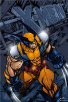 X men Wolverine by AlonsoEspinoza