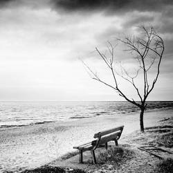 bench by windrides