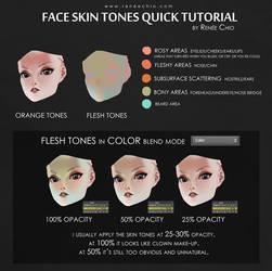 Skin tones tutorial by reneechio