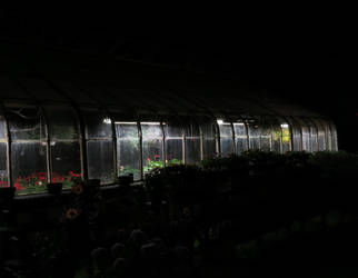 greenhouse at night by Geekophelia