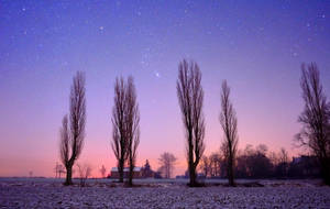 Frozen night sky by Aishlling