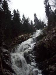 Forest stream 13 by streamline69-stock