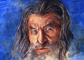 Gandalf the Grey by The-girl-in-Mirkwood