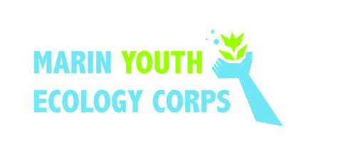 Marin Youth Ecology Corps Logo (official design) by LovetheTrub