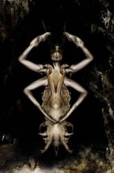 Bone Witch by exorist