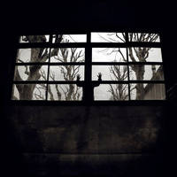 Peeping Tom by SebastienTabuteaud
