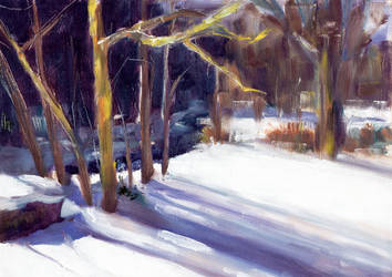 landscape study by doctajules