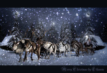 Merry Christmas by Lhianne