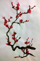 Sakura flowers on a branch by BambooKat