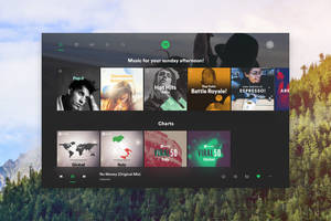 Spotify Redesign by SamuDroid