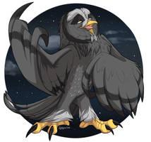 Guardians of Ga'Hoole - Twilight by ignigeno