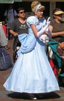 Cinderella Cameo by MizLou